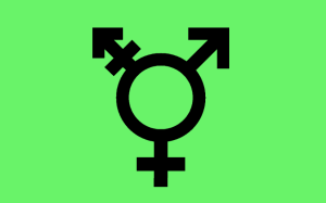 Israeli transgender flag by Ponetium